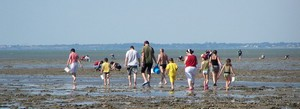 Réglementation relative à la pêche à pied de loisir dans le département du Calvados